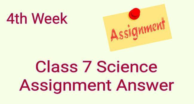 4th week science