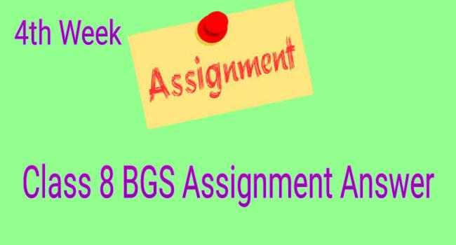 Class 8 BGS assignment